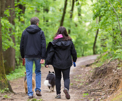 Middle,Aged,Couple,Walking,Their,Two,Dogs,In,Forest.